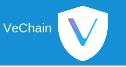 Zuby Collection Deploys VeChain's Traceability Solution