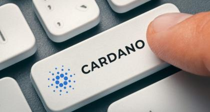Cardano defying crypto market correction, up by 12%