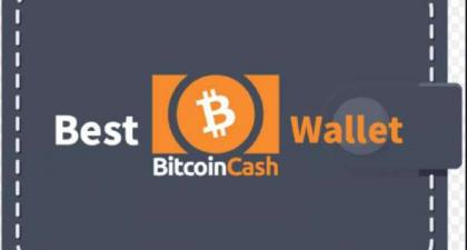 Beginner's Guide to Bitcoin Cash Wallet