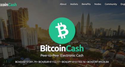 How to Buy Bitcoin Cash South Africa - Top Exchanges Revealed 2021