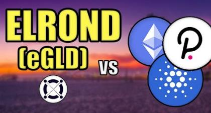 Elrond (eGLD) vs Cardano, Ethereum, & Polkadot! (BIG ELROND PRICE PREDICTION) Hashoshi Interview - BLOCKPATHS