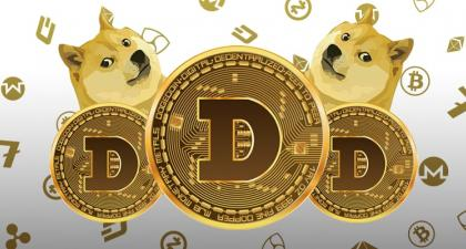 Dogecoin: From Reddit Meme to Elon Musk's Obsession – the Evolution of DOGE