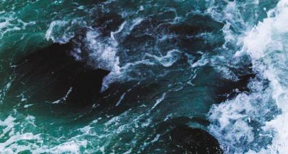 How to Buy Waves (WAVES) Right Now • Cryptocurrency • Benzinga