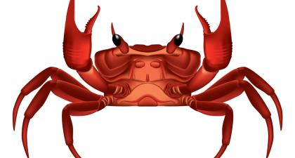 GandCrab ransomware distributed by RIG and GrandSoft exploit kits (updated)