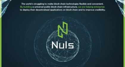 An Understanding of Nuls - A Chinese Perspective