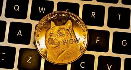 Dogecoin Value Falls And Everyone Blames Elon Musk