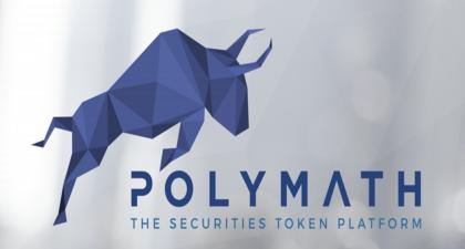 Introduction To Poly Token And Polymath Network