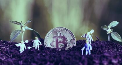 Bitcoin joins in DeFi yield-farming frenzy
